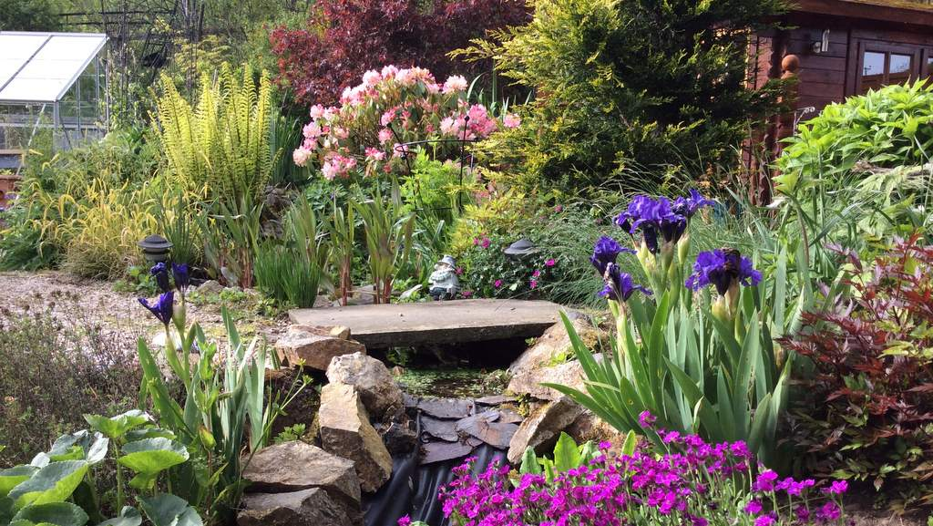 Garden at Castleview B&B, Dufftown