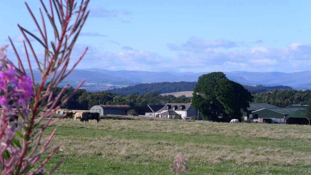 Newton Farm Holidays Scotland