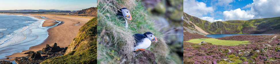 Angus & Aberdeenshire, Scotland
