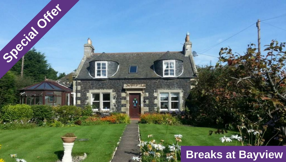 Special Offers at Bayview B&B