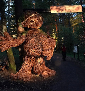 The Enchanted Forest in Pitlochry