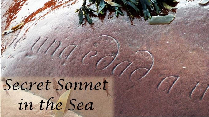 Secret Sonnet in the Sea