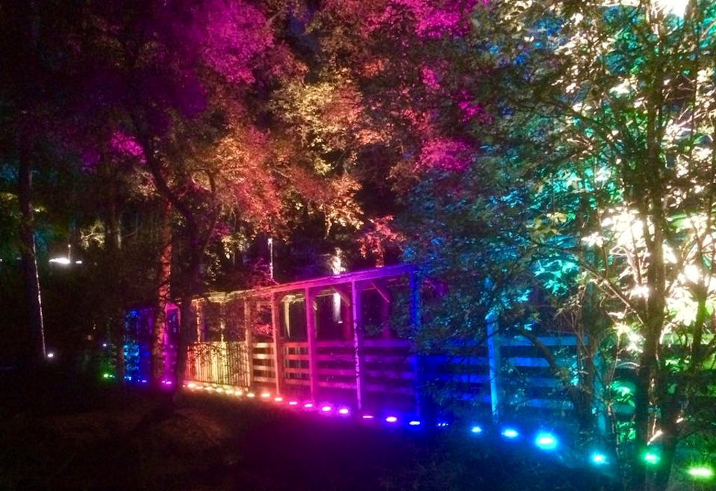 Enchanted Forest, Pitlochry by Northlands B&B