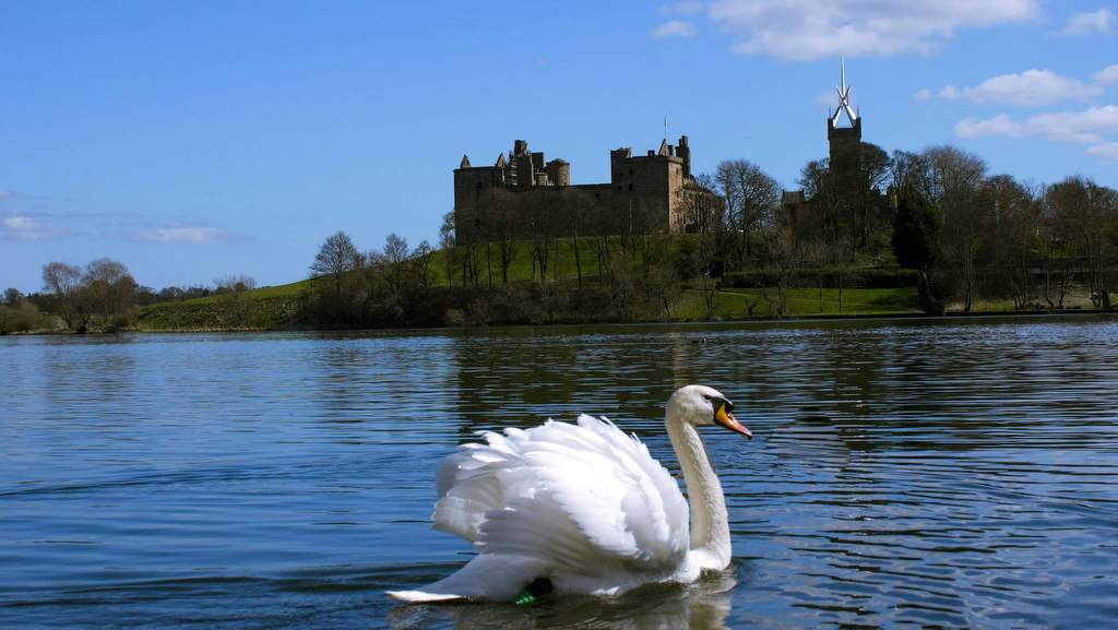 Linlithgow Palace - Photo by Arden Country House, Linlithgow