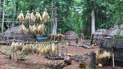 Outlander filming at Faskally forest