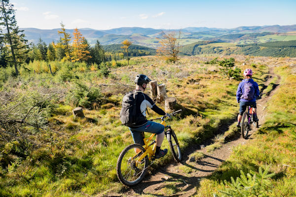 Mountain biking in the Glentress forest. Photo by David-Anderson / Visit Scotland